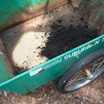 Soil mixed in the wheelbarrow https://ourfairfieldhomeandgarden.com/upcyclerecycle-project-creating-a-succulent-garden-birdbath/