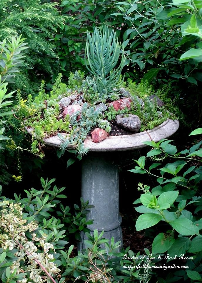 Succulent Birdbath http://ourfairfieldhomeandgarden.com/upcyclerecycle-project-creating-a-succulent-garden-birdbath/