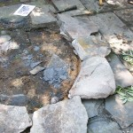 Make a stone firepit http://ourfairfieldhomeandgarden.com/the-firepit-project/