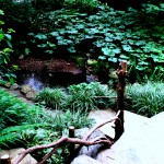 Chanticleer https://ourfairfieldhomeandgarden.com/field-trip-the-unusual-and-romantic-gardens-of-chanticleer/