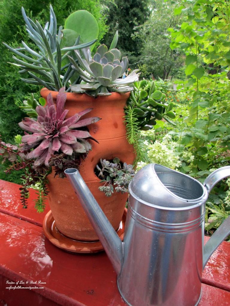 succulent strawberry pot http://ourfairfieldhomeandgarden.com/diy-project-succulent-planter-pot/