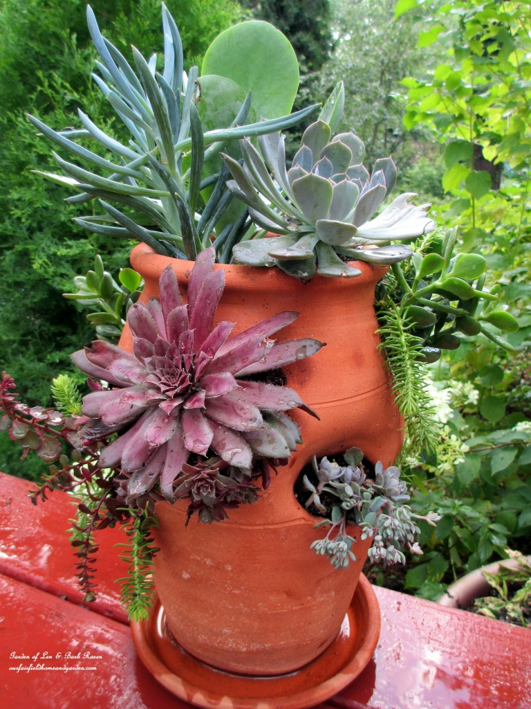 succulent strawberry pot https://ourfairfieldhomeandgarden.com/diy-project-succulent-planter-pot/