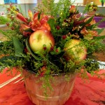 http://ourfairfieldhomeandgarden.com/diy-project-arrange-your-own-fall-apple-harvest-basket/