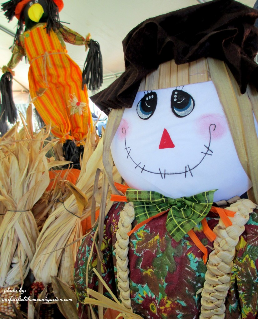 Scarecrows http://ourfairfieldhomeandgarden.com/field-trip-gourds-galore-and-norman-the-pot-bellied-pig-at-marinis-market/