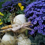 https://ourfairfieldhomeandgarden.com/our-fairfield-home-garden-welcomes-fall/
