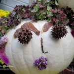 Helen Hydrangea Punkin' Head http://ourfairfieldhomeandgarden.com/getting-into-the-spirit-of-halloween-insert-spooky-music-here/