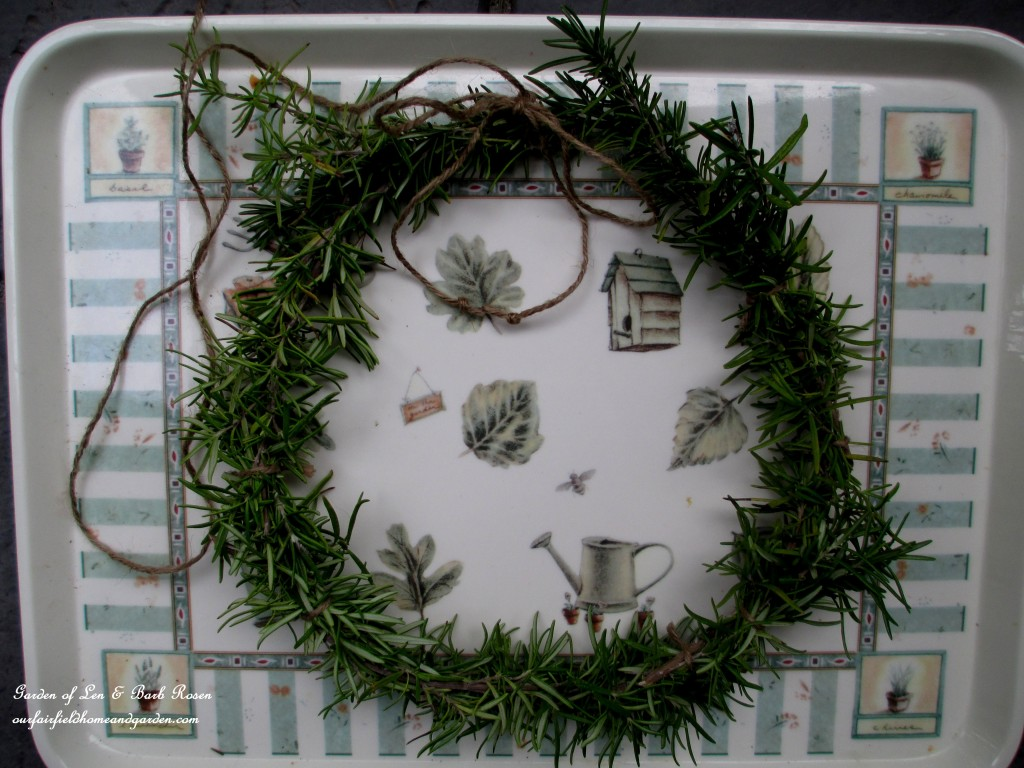 Make a Rosemary Wreath https://ourfairfieldhomeandgarden.com/diy-project-make-a-fresh-rosemary-wreath/