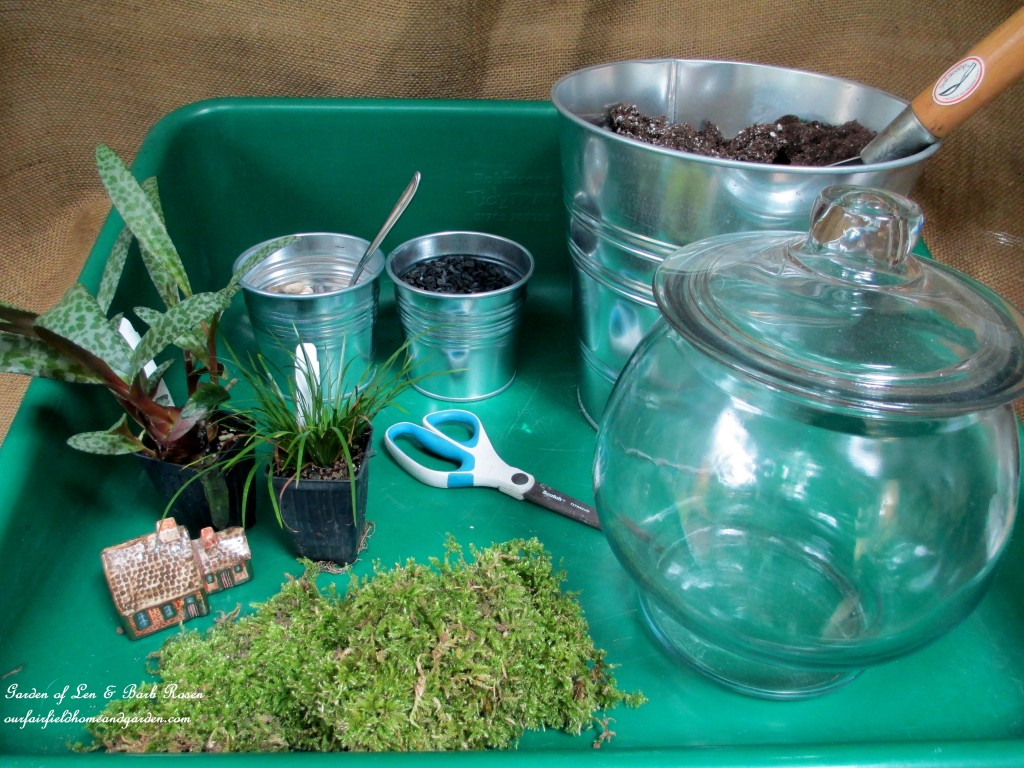 Terrarium DIY http://ourfairfieldhomeandgarden.com/diy-project-design-a-rustic-cottage-getaway-in-a-terrarium/