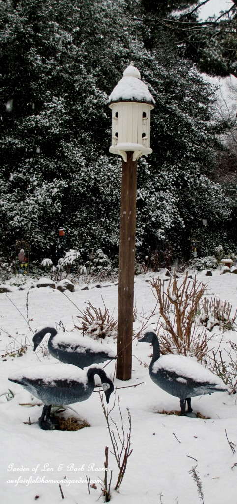 Post Birdhouse & Dad's goose decoys https://ourfairfieldhomeandgarden.com/winter-wonderland-it-finally-snowed/