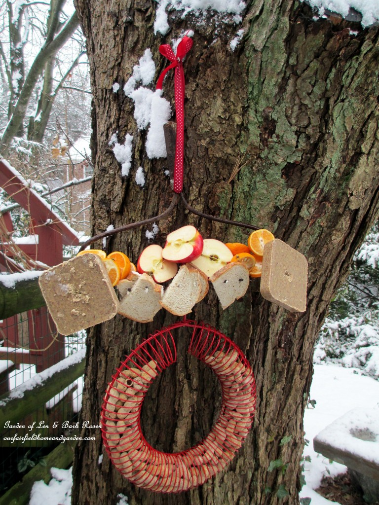 skewered fruit, bread, suet and a hanging peanut feeder will satisfy many different guests http://ourfairfieldhomeandgarden.com/diy-project-turn-a-rake-head-into-a-bird-buffet/