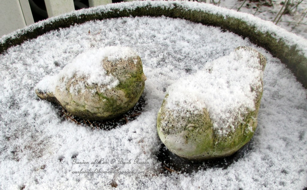 snowy bird bath http://ourfairfieldhomeandgarden.com/january-winter-garden/