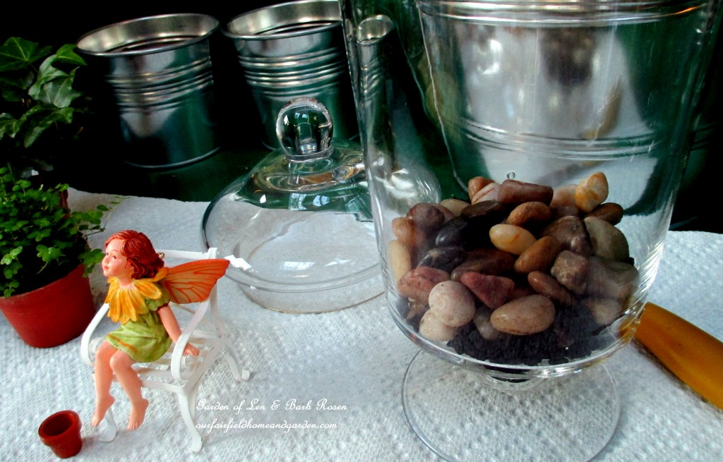 http://ourfairfieldhomeandgarden.com/diy-project-summer-enchantment-in-a-jar/ Assemble your materials : pebbles, activated charcoal, potting soil, tiny ivy & fern plants, dried or live moss, a glass container and accents.