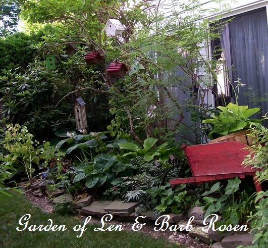 tiny side yard garden http://ourfairfieldhomeandgarden.com/a-trip-down-memory-lane-my-former-garden/