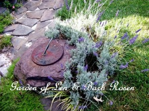 http://ourfairfieldhomeandgarden.com/a-trip-down-memory-lane-my-former-garden/
