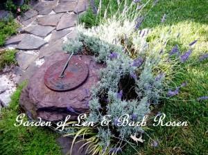 https://ourfairfieldhomeandgarden.com/a-trip-down-memory-lane-my-former-garden/