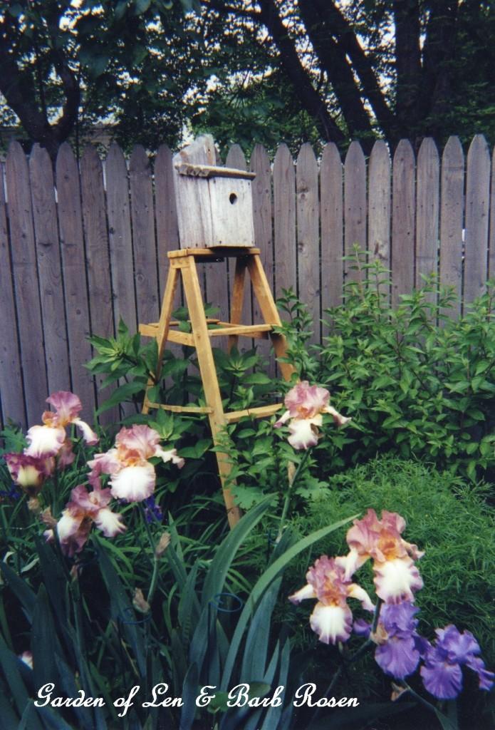 birdhouse ladder http://ourfairfieldhomeandgarden.com/a-trip-down-memory-lane-my-former-garden/