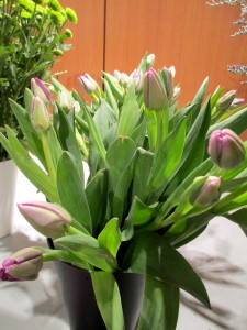 Budded lavender tulips bring spring hues to this bouquet.