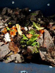 composting with worms in a tub ~ vermicomposting https://ourfairfieldhomeandgarden.com/diy-project-vermicomposting-in-a-tub-in-a-few-easy-steps/