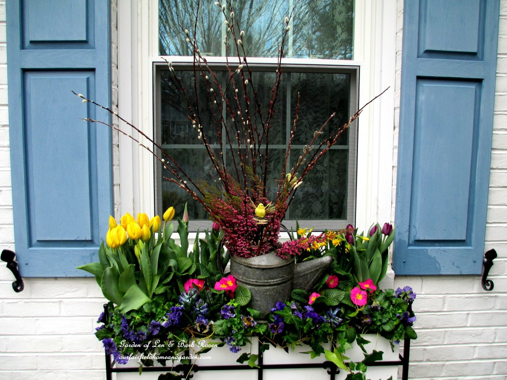 Tulips, hyacinths, primroses, pussy willow branches, heather and pansies plus some ivy from the yard