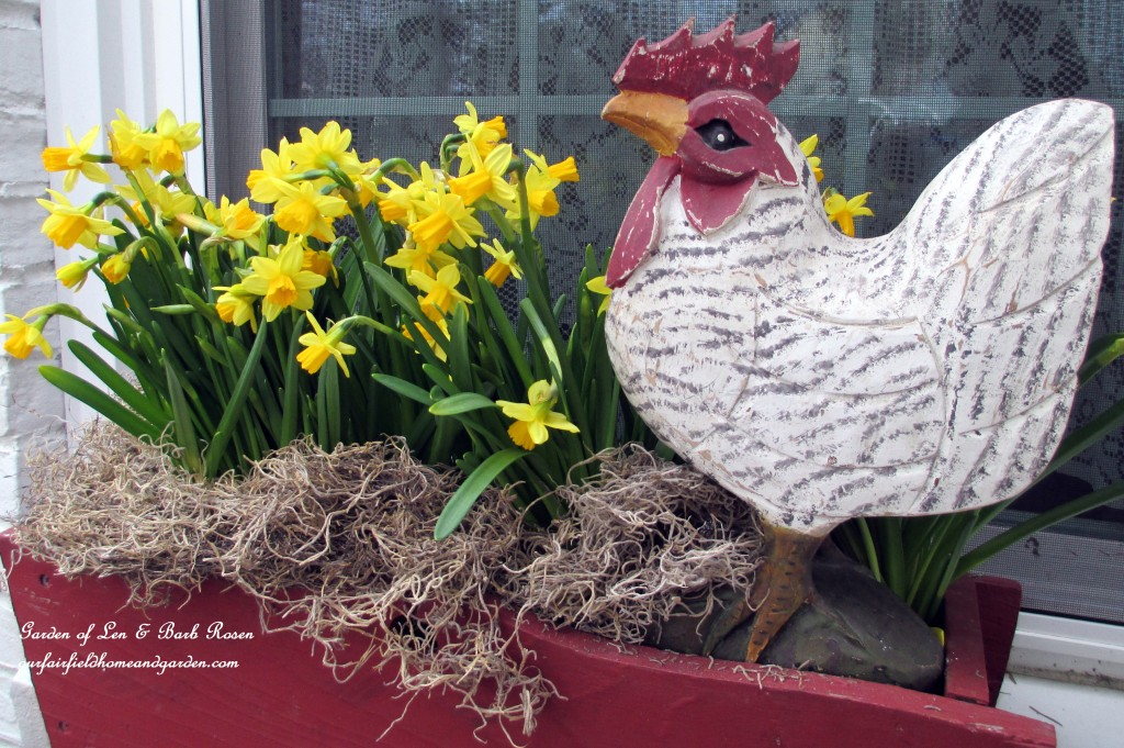 springwindowbox https://ourfairfieldhomeandgarden.com/spring-is-busting-out-all-over/