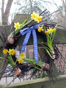 Tete a Tete Wreath http://ourfairfieldhomeandgarden.com/spring-is-busting-out-all-over/