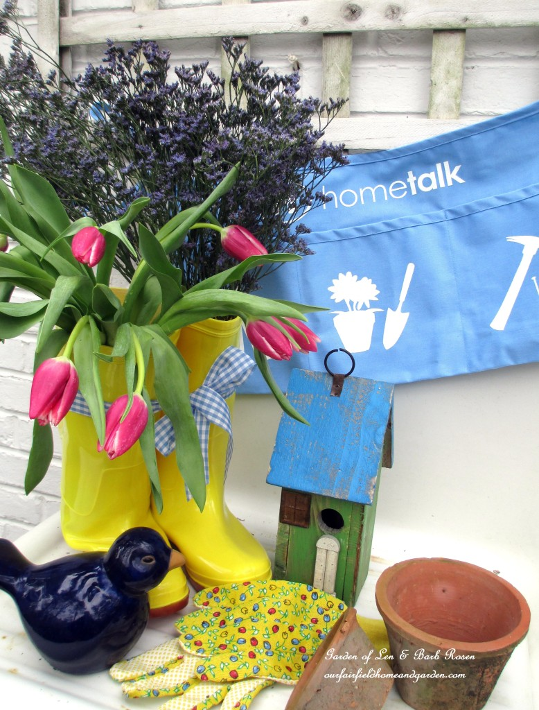 Hometalk http://ourfairfieldhomeandgarden.com/spring-is-busting-out-all-over/