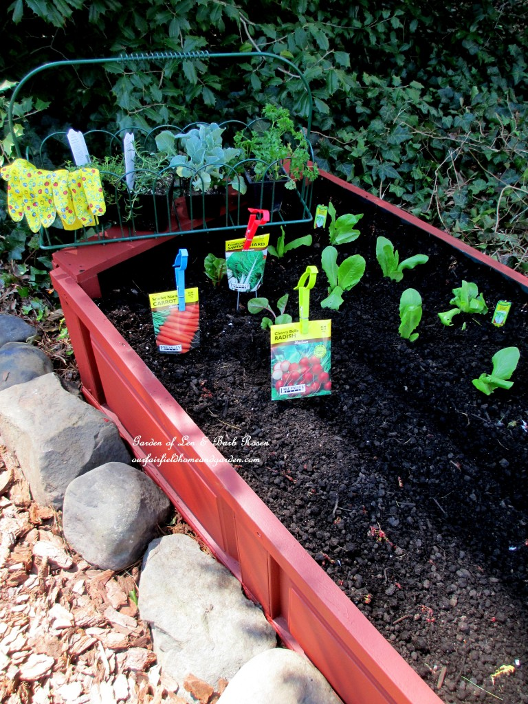 finished raised bed with early season plantings http://ourfairfieldhomeandgarden.com/diy-project-raised-beds-for-free/