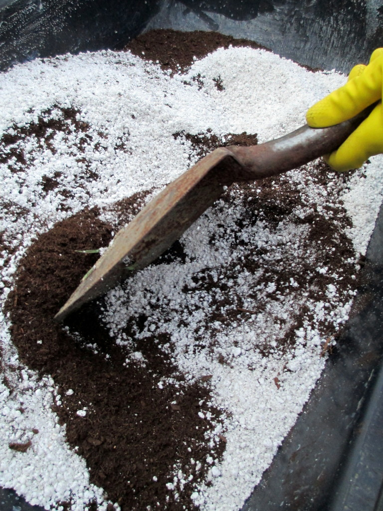 Step #  ~ Add perlite or coarse sand