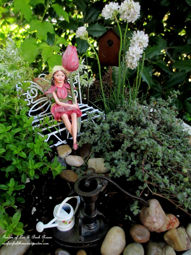 "Tulip Fairy sitting amidst the wooly thyme, lemon thyme, Armeria ""Morning White Star"", stonecrop sedum ""Larienem Park"" and ""Coral Carpet"". https://ourfairfieldhomeandgarden.com/diy-project-mothers-day-fairy-garden/"