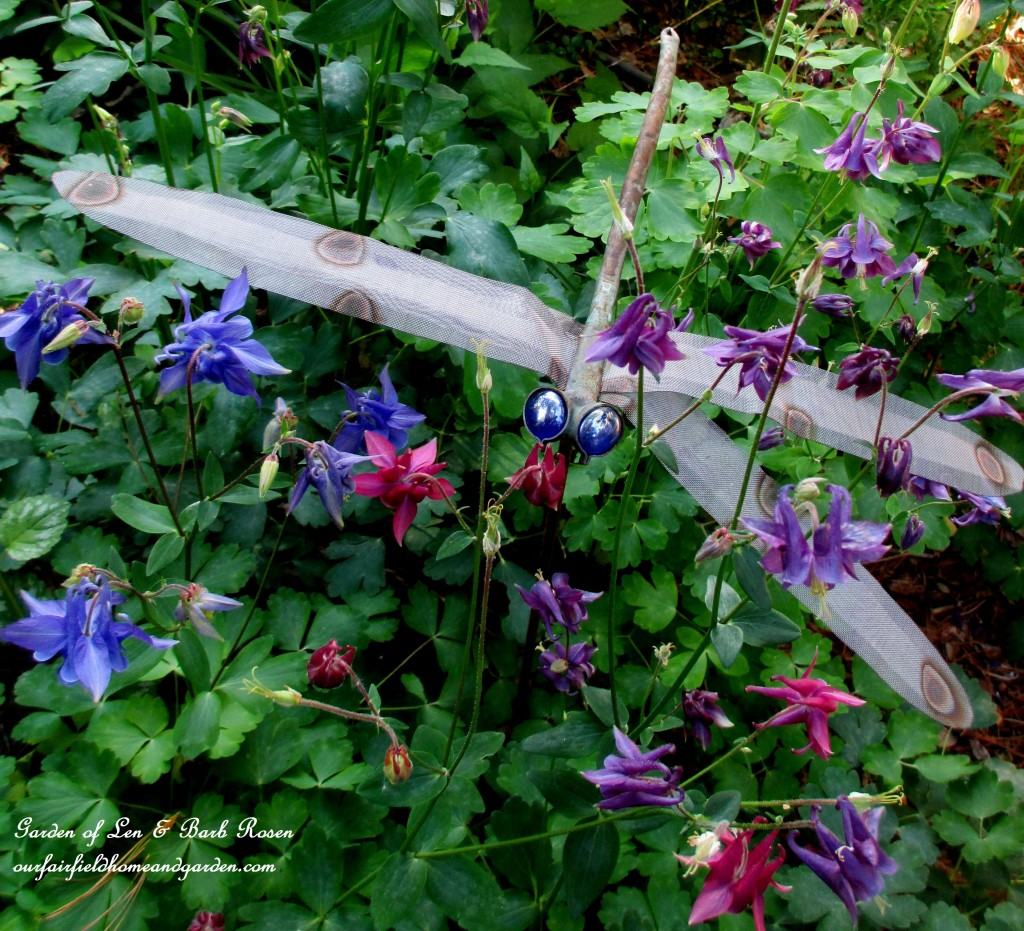 Dragonfly in the Columbine https://ourfairfieldhomeandgarden.com/may-garden-birdhouses-flowers/