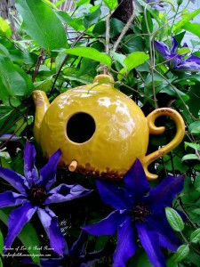 Teapot Birdhouse in the Jackmanii Clematis https://ourfairfieldhomeandgarden.com/may-garden-birdhouses-flowers/