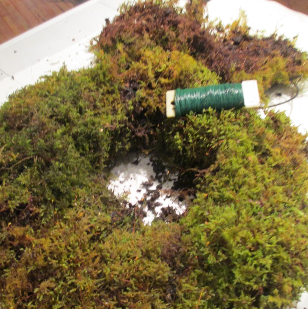 Step 3 ~ Hold the sheet moss together and wrap tightly with floral wire. * Mark where you started!