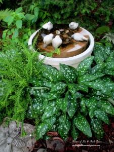 ferns & pulmonaria around a water feature https://ourfairfieldhomeandgarden.com/garden-walk-july-1st/