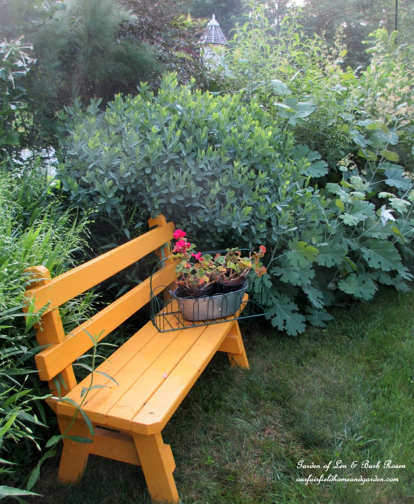 yellow bench in the front garden http://ourfairfieldhomeandgarden.com/garden-walk-july-1st/
