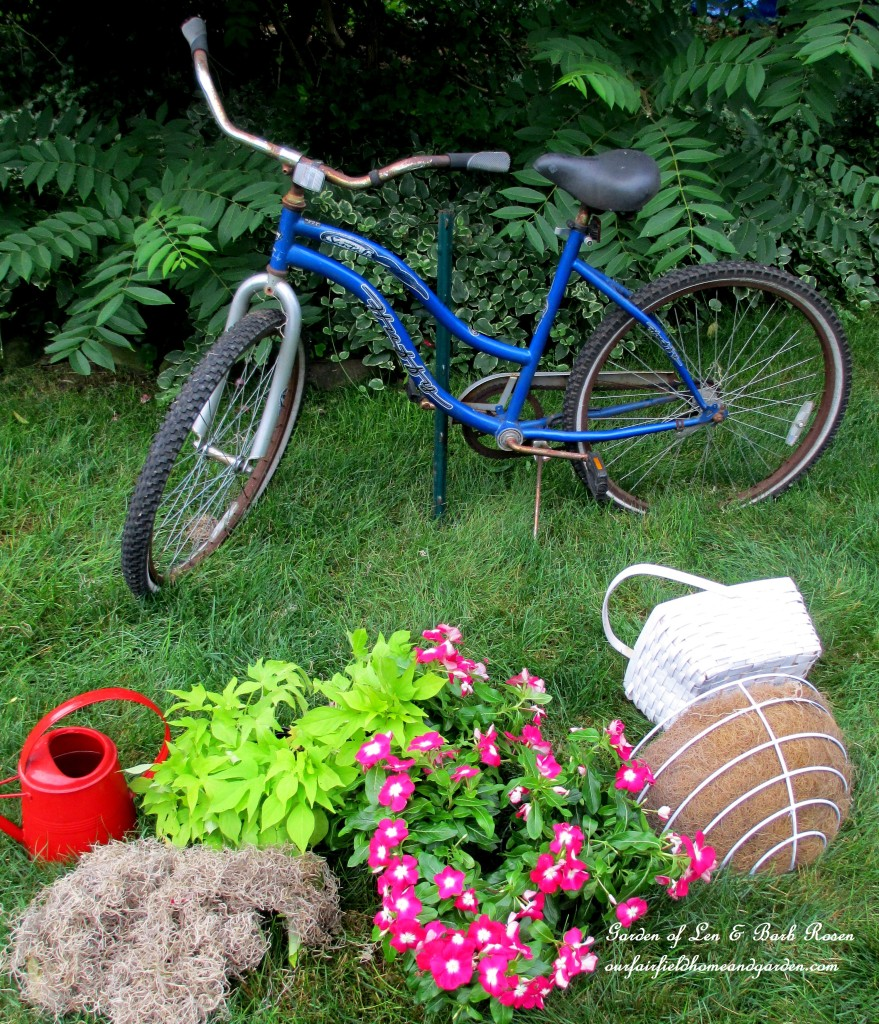 Assemble the materials ~ two baskets, plants, sphagnum moss and an old bike. https://ourfairfieldhomeandgarden.com/diy-project-my-bicycle-planter/
