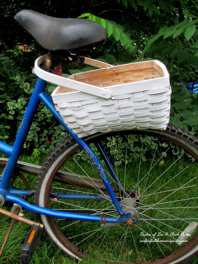 You can put the basket handle over the seat and let it rest on the wheel. http://ourfairfieldhomeandgarden.com/diy-project-my-bicycle-planter/