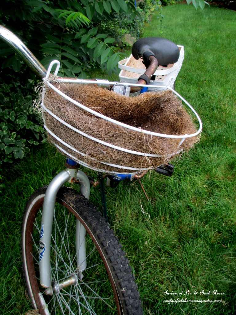 Attach the front basket to the handle bars. http://ourfairfieldhomeandgarden.com/diy-project-my-bicycle-planter/