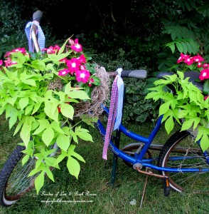 Make a bike planter! https://ourfairfieldhomeandgarden.com/diy-project-my-bicycle-planter/