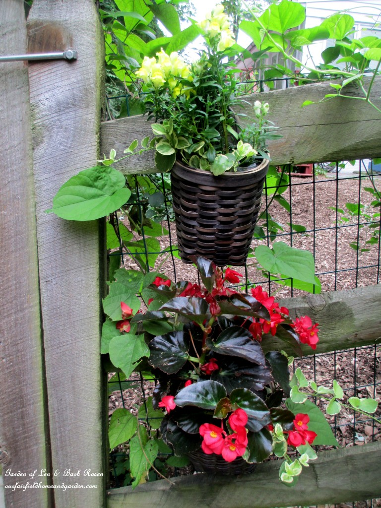 planted baskets by the back gate