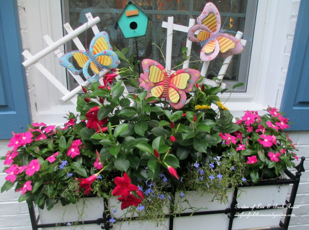 summer window box https://ourfairfieldhomeandgarden.com/garden-walk-my-summer-garden/