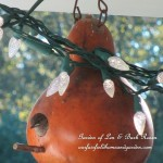 It's All About the Birds! http://ourfairfieldhomeandgarden.com/its-all-about-the-birds-birdfeeders-birdbaths-and-birdhouses-in-our-garden/