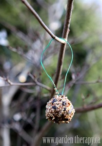 Pinecone Feeders ~ Garden Therapy