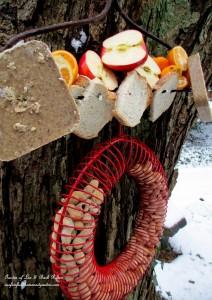 winter feeding http://ourfairfieldhomeandgarden.com/its-all-about-the-birds-birdfeeders-birdbaths-and-birdhouses-in-our-garden/