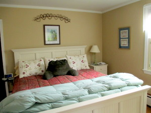 Before ~ comfy but frumpy, bedroom makeover, home decor
