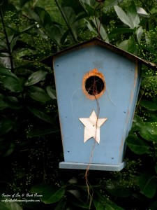 Well used birdhouse http://ourfairfieldhomeandgarden.com/its-all-about-the-birds-birdfeeders-birdbaths-and-birdhouses-in-our-garden/