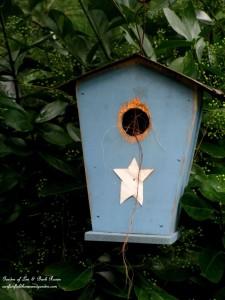 Well used birdhouse https://ourfairfieldhomeandgarden.com/its-all-about-the-birds-birdfeeders-birdbaths-and-birdhouses-in-our-garden/