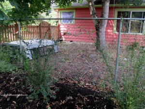 This is a view that needs help! https://ourfairfieldhomeandgarden.com/ddiy-beautify-a-chain-link-fence-with-bamboo/