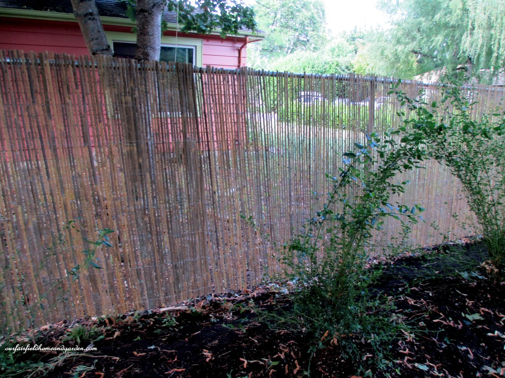 Diy beautify a chain link fence with bamboo our fairfield after five foot high chain link fence is softened by the split bamboo fencing baanklon Choice Image