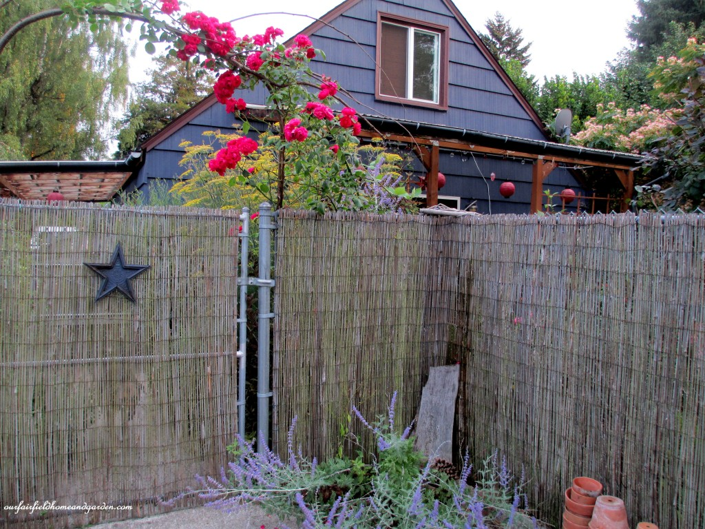Bamboo fencing ages to a soft gray and is very durable. https://ourfairfieldhomeandgarden.com/ddiy-beautify-a-chain-link-fence-with-bamboo/