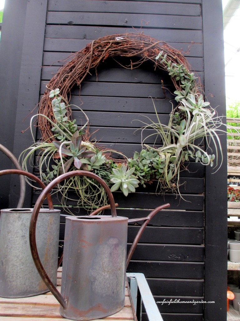 succulents & air plants in a wreath